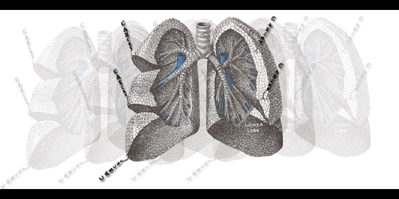 cancer tearing lungs apart