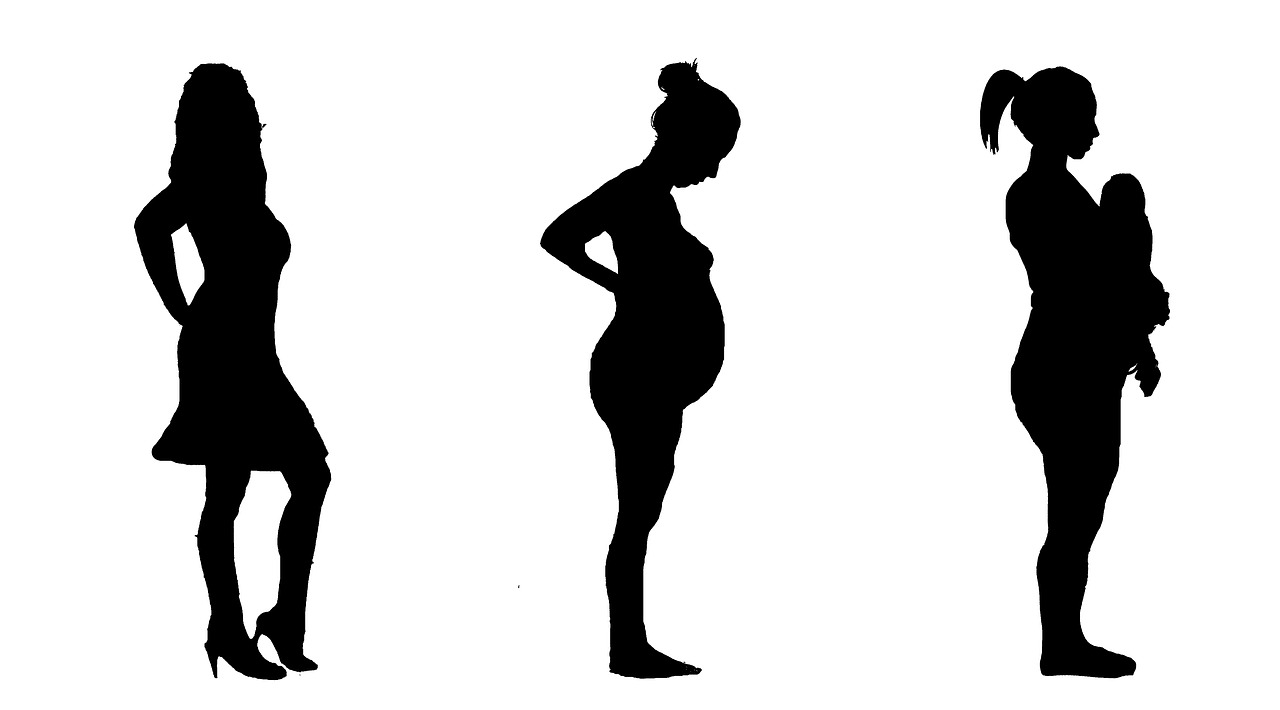 Different Phases of Pregnancy